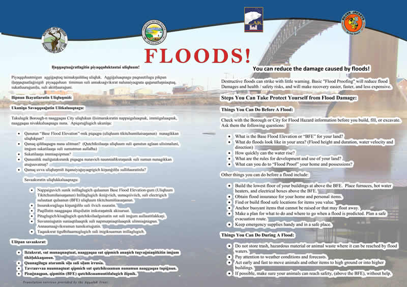 Flood Poster graphic